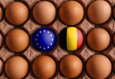 Handel als argument geen excuus voor tegenhouden kooiverbod volgens Consumentenorganisatie Foodwatch